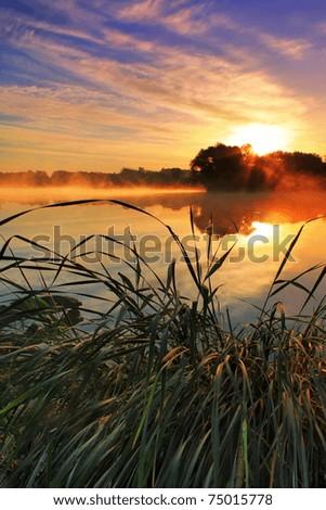 Foggy sunrise over the lake - stock photo