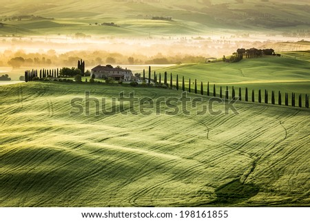 Foggy Valley in the morning, Tuscany - stock photo