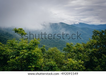Foggy view of the Blue Ridge Mountains from Skyline Drive in Shenandoah National Park, Virginia.