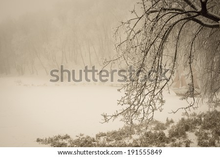 foggy winter lake and sailfish with covering the branches of trees in forest, vintage style  - stock photo