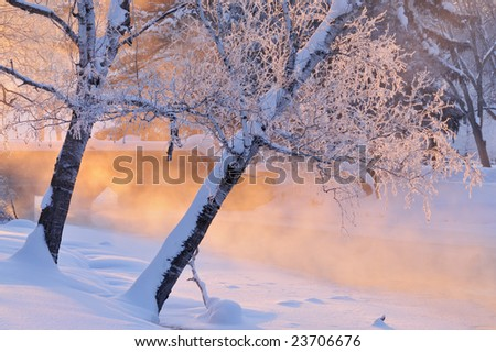 Foggy winter landscape with frosted trees at sunrise Portage Creek, Milham Park, Michigan, USA - stock photo