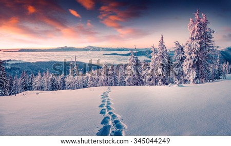 Foggy winter sunrise in the snowy mountain. Instagram toning. - stock photo