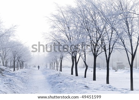 Foggy wintry morning in Saint-Petersburg (Russia). People are walking to work on snow-covered avenue. - stock photo