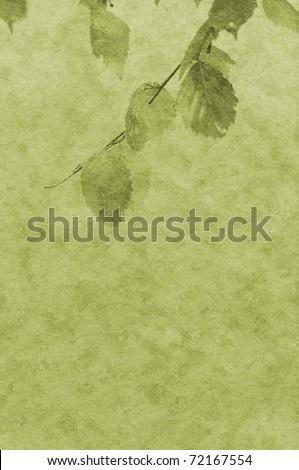 foliage - stock photo