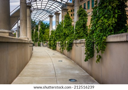 Foliage hanging along a walkway at Pack Square Park in Asheville, North Carolina. - stock photo