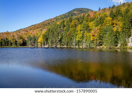Foliage in the White Mountains National Forest, New Hampshire, USA - stock photo