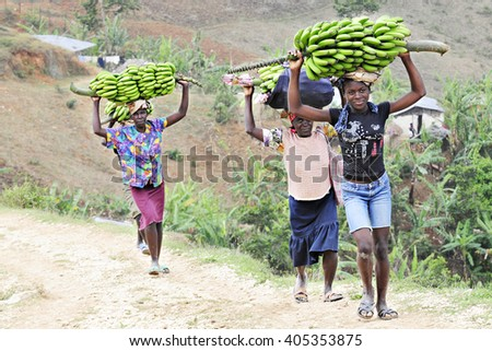 FOND BAPTISTE - FEBRUARY 18, 2016:  Four Haitian women carrying large loads of bananas on their heads.  They're climbing uphill as they're going home from market. - stock photo