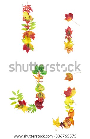 Font made of autumn leaves isolated on white. Letters i and j. - stock photo