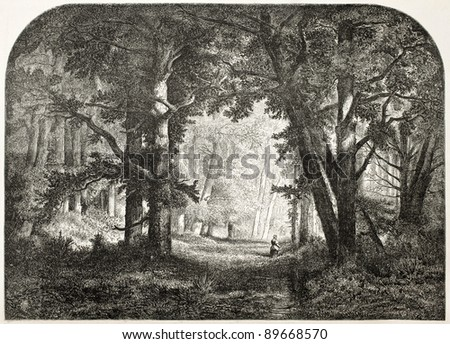 Fontaneibleau forest old view. Created by Anastasi and Lavieille, published on L'Illustration, Journal Universel, Paris, 1858 - stock photo