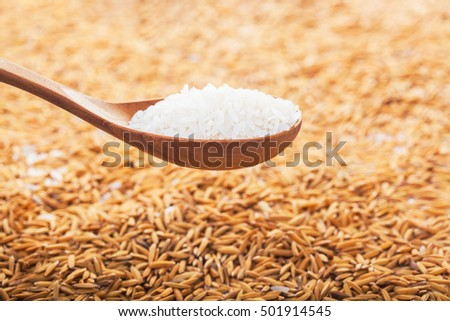 food background. rice grain in a wooden spoon and forming a background.