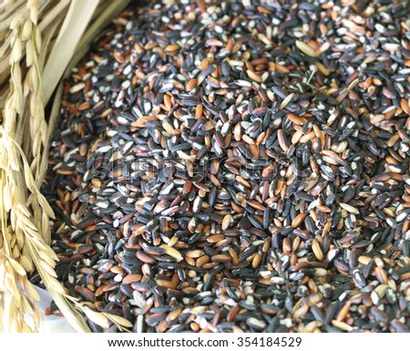 Food background with of rice variety . rice mixture. brown rice, black rice. - stock photo
