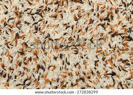 Food background with three mixed of Thai rice varieties : brown rice, mixed wild rice, white (jasmine) rice. species Oryza sativa. - stock photo