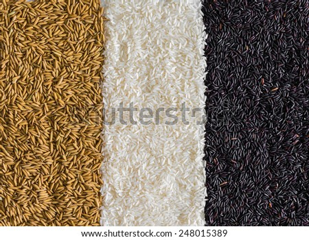 Food background with three rows of rice varieties : brown rice, black rice, white (jasmine) rice - stock photo