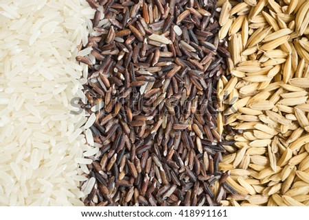 Food background with three rows of rice varieties : paddy rice, black rice and white (jasmine) rice - stock photo