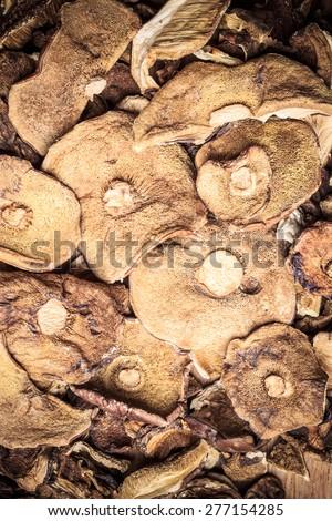 Food. Closeup dry mushrooms boletus as background texture - stock photo