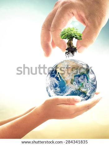 Food concept. Two Human Hand Add Big Plant Planet Ecology Creation Spring Time CSR Trust Tree Grow God Seed Nature Earth Map Bio Design Energy City Save Globe. Elements of this image furnished by NASA - stock photo