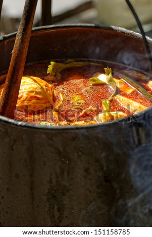 food cooking in stew pot in the nature - stock photo
