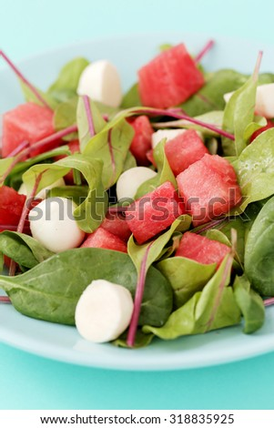 Food. Delicious watermelon salad on the table