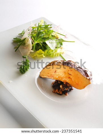 food gourmet foie gras - stock photo