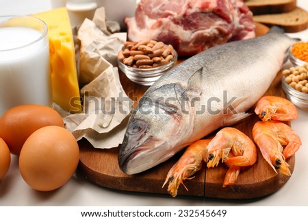 Food high in protein close-up - stock photo