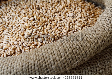 Food in jute sack - stock photo