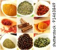 Food ingredients and spices collage - stock photo