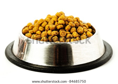 food of dog - stock photo