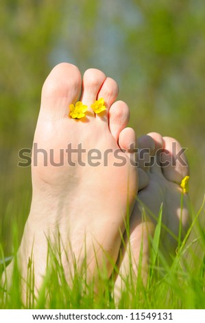 Foot in green grass with flowers - stock photo