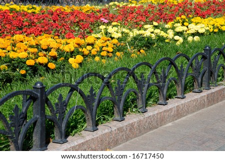 Foot path with flowers - stock photo