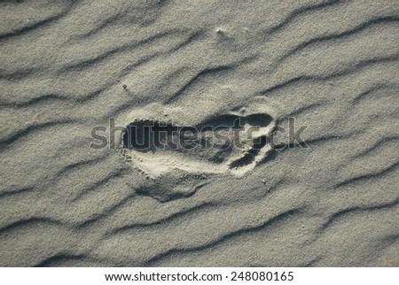 Foot print on sandy beach  - stock photo