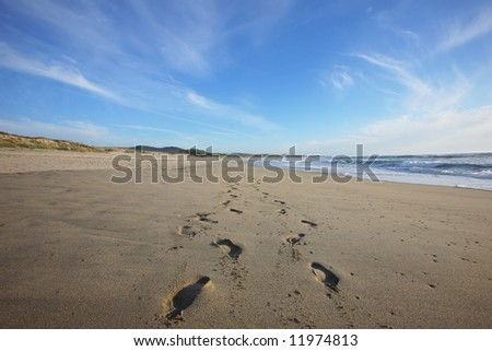 foot prints in the beach - stock photo