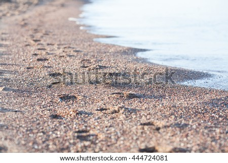 Foot prints on the beach sand by the sea - stock photo