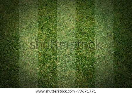 football grass background texture - stock photo