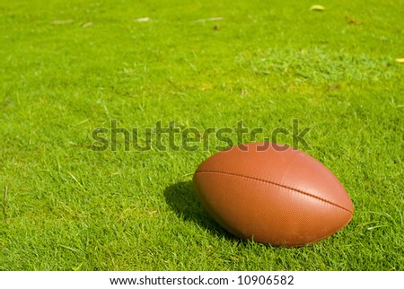Football in a Grass Playing Field - stock photo