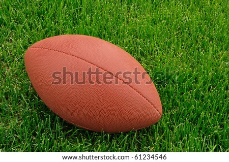 Football on a grass playing field, horizontal, copy space - stock photo