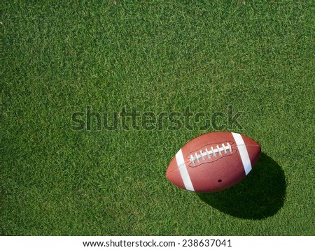 Football on green sports grass angled to the left.                                - stock photo