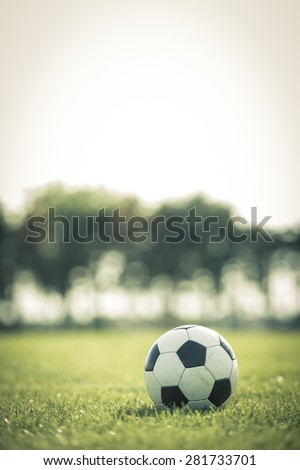 Football on the soccer field - stock photo
