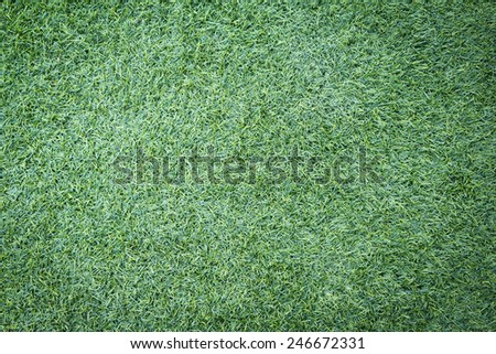 Football or soccer grass field background - stock photo