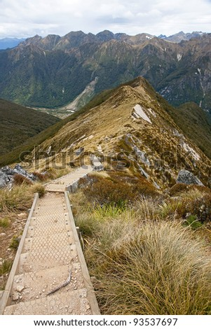 Footbridge on the  Kepler Track in New Zealand