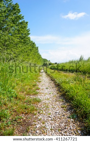 Footpath along green grass and trees - stock photo