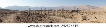 Footpath in Makhtesh Katan in Negev desert, Israel                                - stock photo