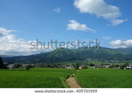 footpath in rice fields around Mt.Aso, Kumamoto, Japan - stock photo