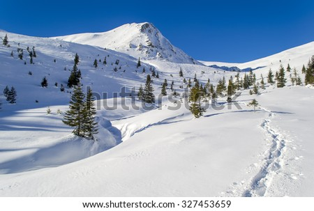 Footpath in the snow to the mountain. Trees. Clear sky, sunny. Winter. Ukraine - stock photo