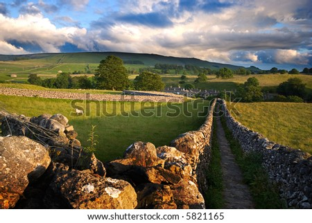 Footpath in Wharfedale, Yorkshire Dales National Park, United Kingdom - stock photo