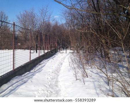 Footpath in woods covered in snow, with footprints, january winter time, on a sunny day, Belgrade, Serbia