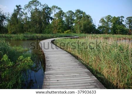 "Footpath over a small lake in Wetland park, ""Hong Kong"" - stock photo"