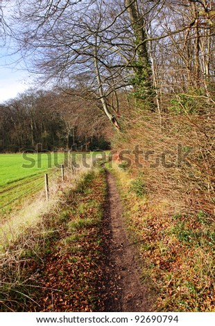 Footpath running between a field and woodland bathed in Winter sunshine