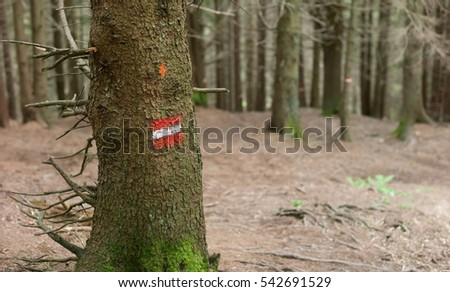 Footpath way marker in coniferous forest, Bavaria, Germany