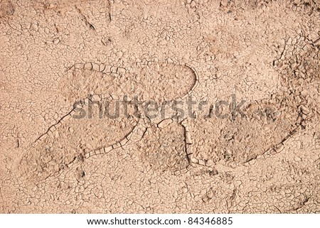 footprint - stock photo
