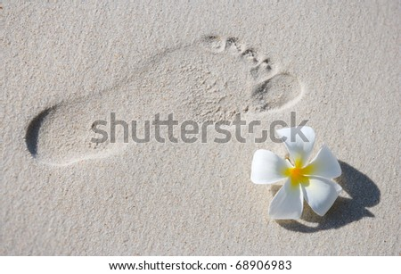 Footprint and frangipani flower on white sand tropical beach - stock photo